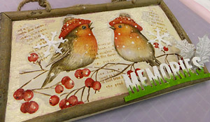Bird_boad_2